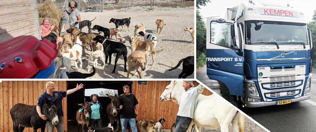 Egal wo Tiere unsere Hilfe brauchen...
